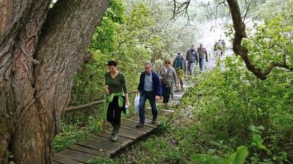 Black Poplar Conference in Novi Sad: DANUBEPARKS Giants