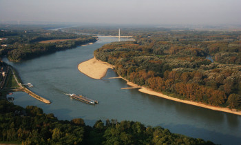 Kern / Donau-Auen National Park - Danube in the east of Vienna