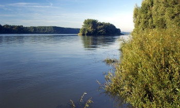 Kovacs / Donau-Auen National Park - Danube in the east of Vienna