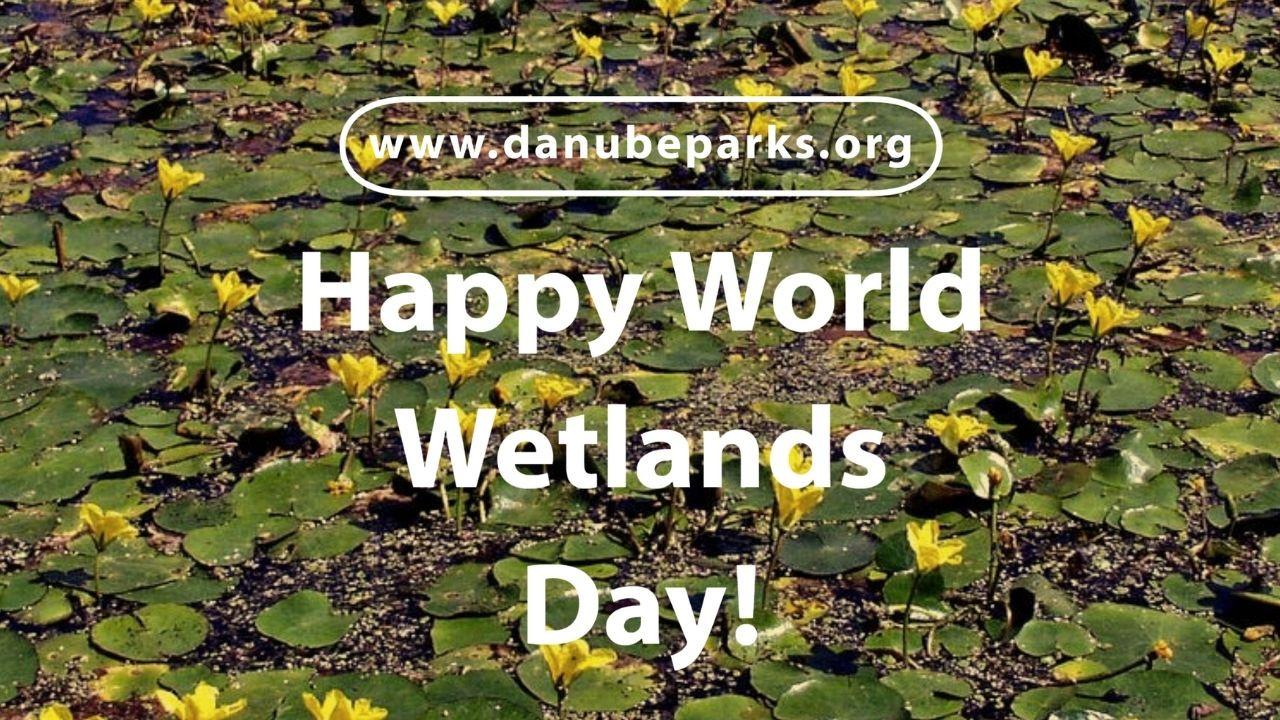 World Wetlands Day 2021.